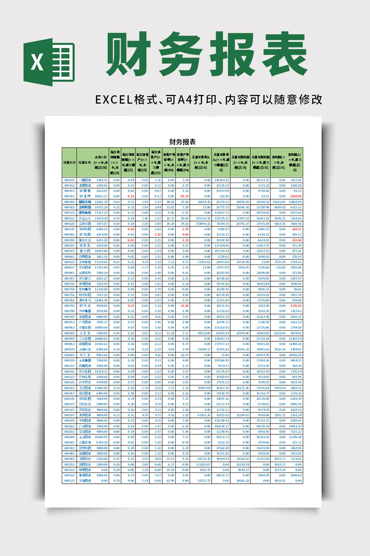 财务会计财务报表excel表格模板
