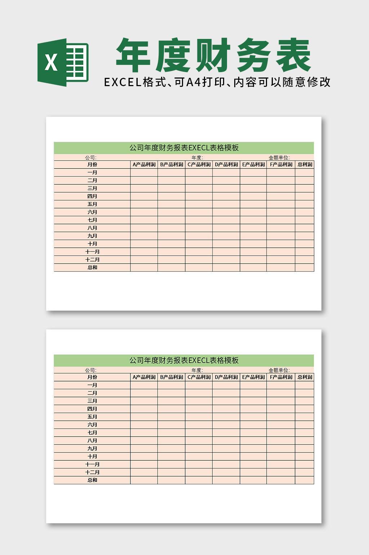 公司年度财务报表EXECL表格模板